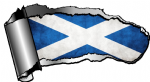 Ripped Open Gash Torn Metal Design With Scotland Scottish Saltire Flag Motif External Vinyl Car Sticker 140x75mm